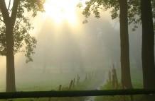 De Hussebeek in het Bunderbos